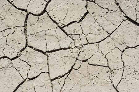 parched: parched earth