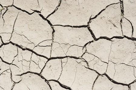 torrid: dry ground