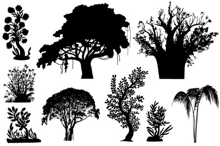 vegetation:  various African trees and bushes - Vector