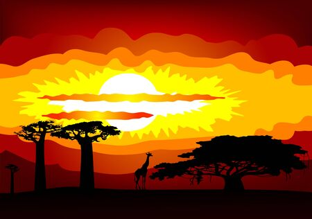 sunset in Africa - vector Vector