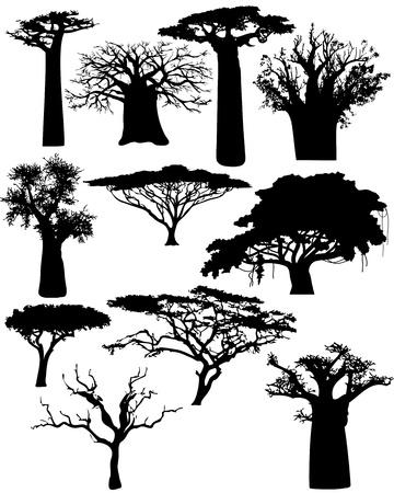 verschillende Afrikaanse bomen en struiken - vector Stock Illustratie