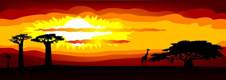 sunset in Africa - vector Vector