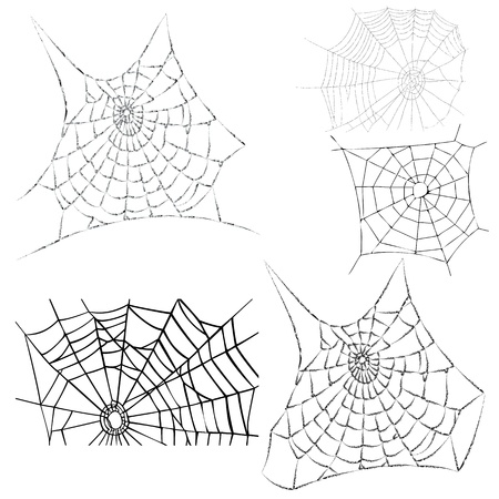spiderweb:  various cobwebs - spider webs - vector