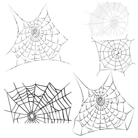 cobweb:  various cobwebs - spider webs - vector