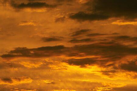 duskiness: gloaming