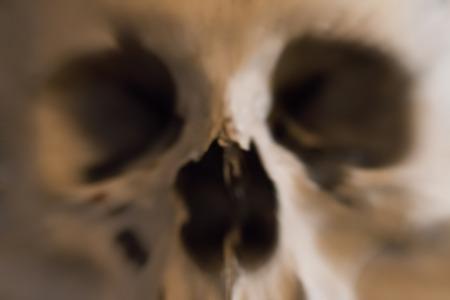 tremante: cranio umano - blured - timore e tremore Archivio Fotografico