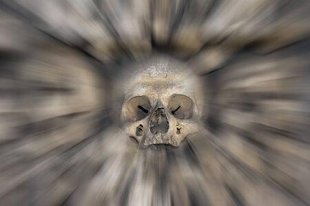 tremante: cranio umano - timore e tremore Archivio Fotografico