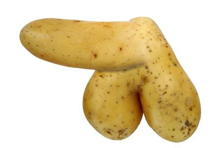 erection: bizarre potato