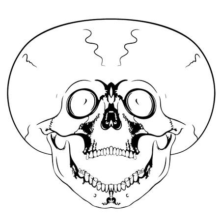 eye sockets: vector bizarre skull - screaming skull
