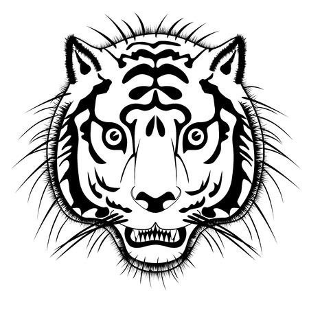 prey: Vector tiger head - beast of prey Illustration