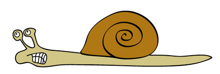 rapidity: Vector angry snail - slowly animal