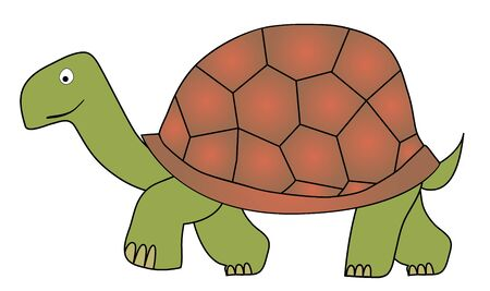 slow: Vector tortoise - slow animal