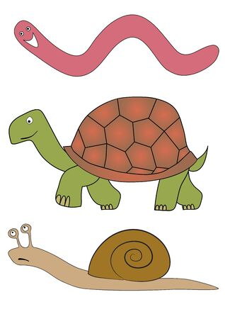 ironic: vector worm snail and tortoise