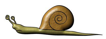 quickness: snail - slowly animal
