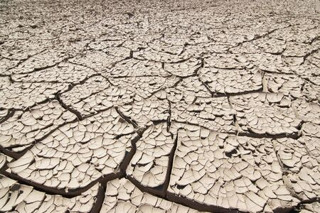 desiccation: dried ground - dry season