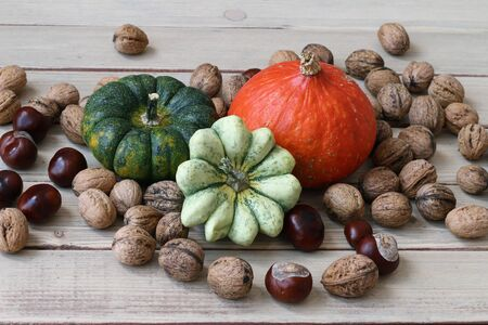 pumpkins gourds: Products of autumn - pumpkins, gourds, nuts, chestnuts