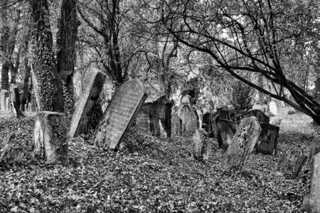 rabi: Old Jewish cemetery at Kolin