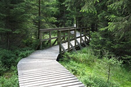 moorland: Nature Trail