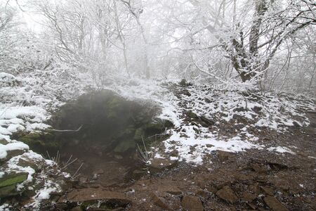 pollutants: Steam rising from a fissure in the rock - Borec hill in the Czech Central Mountains - natural attraction