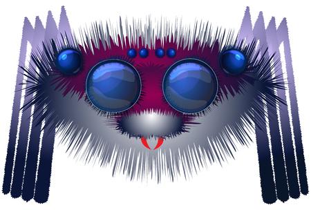 arachnoid: Big hairy spider Illustration
