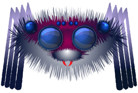 Big hairy spider Illustration