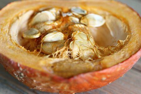 cucurbit: Detail of the cut pumpkin - pumpkin seeds