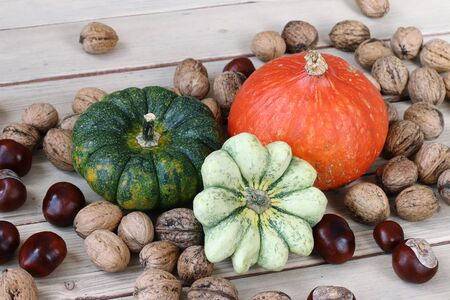 pumpkins gourds: Still life with products of autumn - pumpkins, gourds, nuts, chestnuts