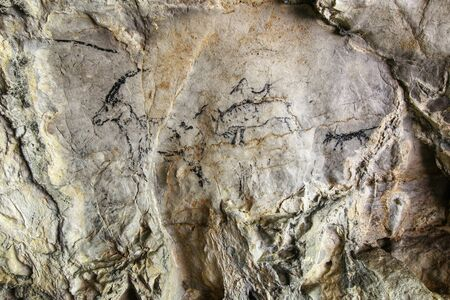 reproduction animal: Cave painting in prehistoric style - detail