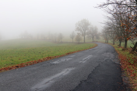 Empty road in misty autumn day