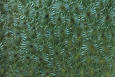 Ornate colored glass - detail of the surface - glass texture - patterned glass Stock fotó
