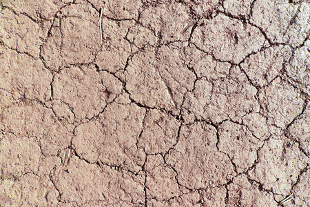 Detail of the cracked dried ground - dry season
