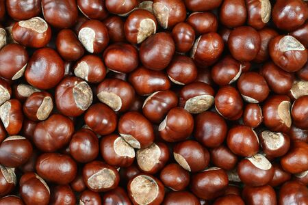 Detail of the chestnuts - autumn product
