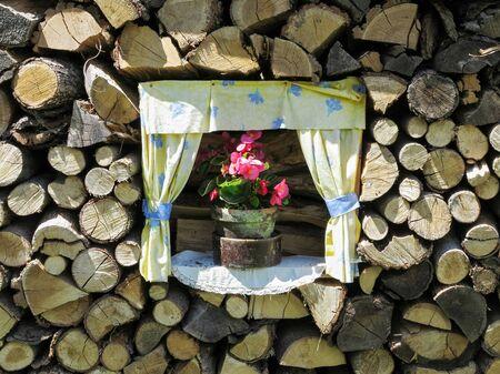 Flower in a flower pot in a woodpile - unusual garden
