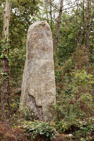 A lone menhir in a forest near Erdeven in Brittany, France