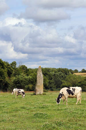 Menhir of Kerguezennec, Begard, Cotes-d'Armor department, Brittany, France