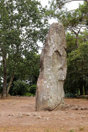Geant du Manio - Giant of Manio - 6.5 meters high menhir is the largest menhir in Carnac