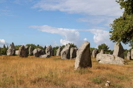 Carnac stones - Alignments of Kermario - rows of menhirs in Brittany, France