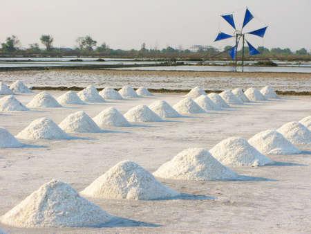 salinity: Salt fields