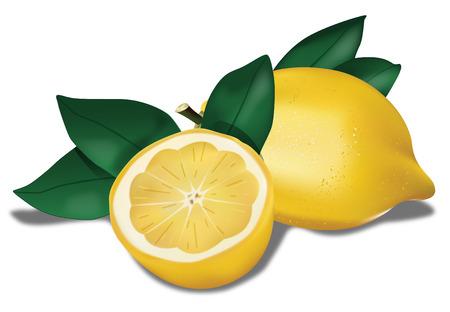 coctel de frutas: Lemon biológica con hojas  Vectores