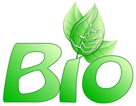 Bio written with stylized leaves