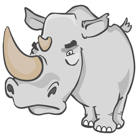 Gray rhinoceros with a look very angry
