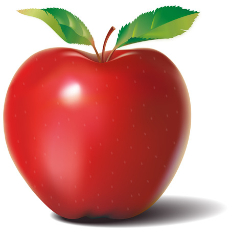 red apple with two leaves