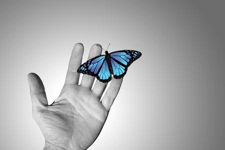 manos sucias: Mano arrugada de un hombre que trabaja con una mariposa azul Foto de archivo