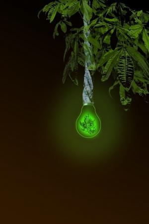 photons: Renewable Energy