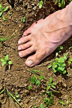 Foot man walking barefoot on a plowed field