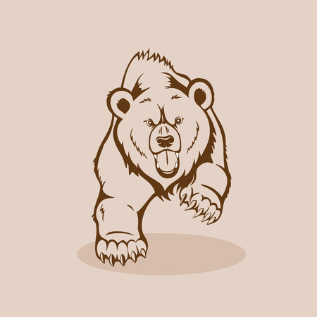 Angry grizzly bear, walking showing fangs and claws Фото со стока - 70767894