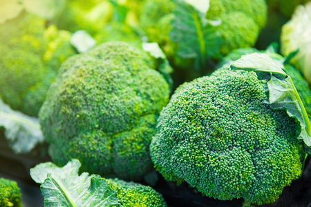 Group of broccoli heads on trays in supermarket, healthcare, diet food, vegetable, vegetarian, vegan concept closeup and selective focus