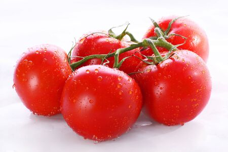 Fresh tomatoes with water drops photo