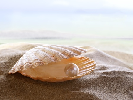 scallop shell: An open sea shell with a pearl inside.