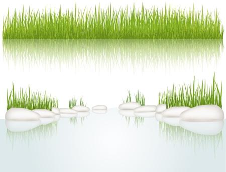 grass blade: Grass.